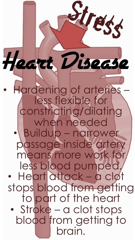Heart Disease from stress